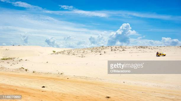 ride a dune by boogie - crmacedonio stock photos and pictures