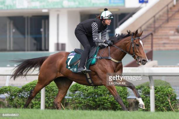 Rider Alexandra Slattery training Rising Romance on the turf course prepare for the Audemars Piguet Queen Elizabeth II Cup at Sha Tin racecourse on...