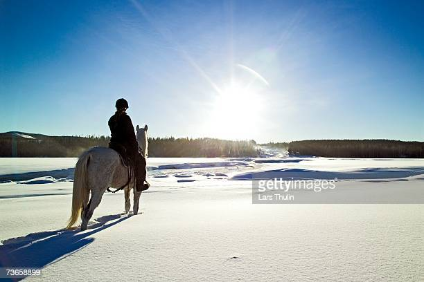 A rider and a horse in the snow.