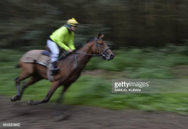 Rider gallops with his horse during a training day at Vampil yard, near Malacky, Slovakia on September 3, 2014. AFP PHOTO/SAMUEL KUBANI