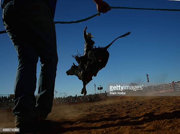 A rider holds on as a bull tries to throw him during the Bull Ride Spectacular on the first day of the 2014 Deni Ute Muster at the Play on the Plains...