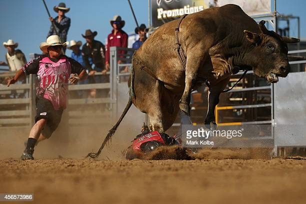 A rider is thrown by a bull during the Bull Ride Spectacular on the first day of the 2014 Deni Ute Muster at the Play on the Plains Festival grounds...