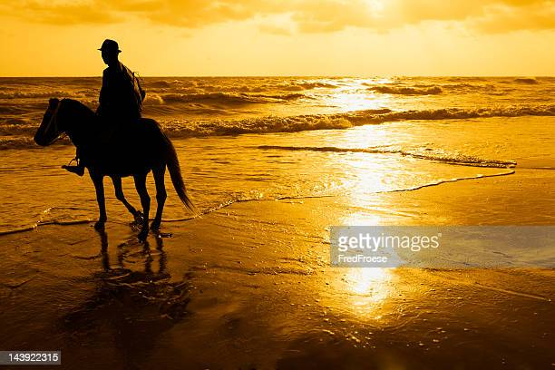 rider on the beach - hua hin thailand stock pictures, royalty-free photos & images