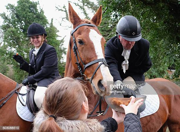 Rider takes a chicken nugget from a bowl as horses, riders and hounds from the Cleveland Hunt prepare to ride out on the traditional New Year's Day...