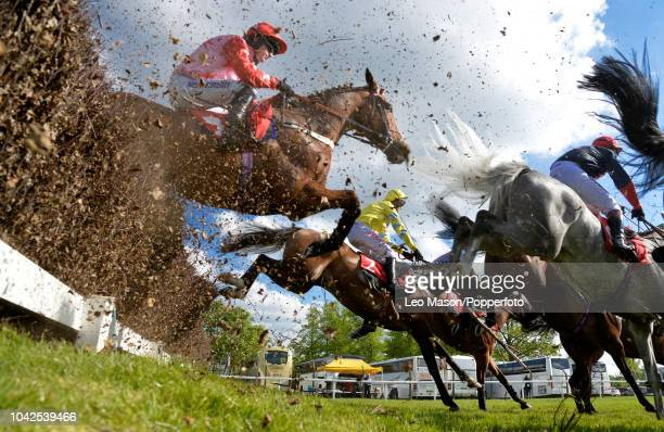 Riders and horses compete in The Josh Gifford Novices Handicap Chase Race at The Jump Finale Meeting Sandown Park racecourse on May 29 2017 in...