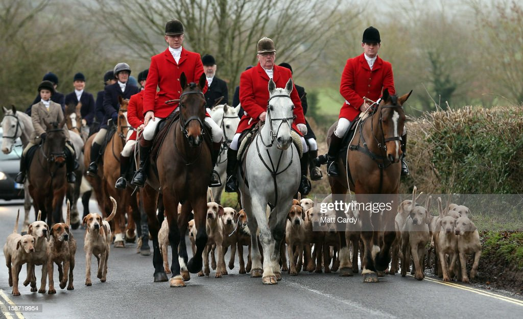 Riders and hounds from the Avon Vale Hunt arrive for their traditional Boxing Day hunt, on December 26, 2012 in Lacock, England. As hundreds of hunts met today, Environment Secretary Owen Paterson claimed that moves to repeal the ban on hunting with dogs in England and Wales may not happen in 2013, although he insisted it was still the government's intention to give MPs a free vote on lifting the ban.