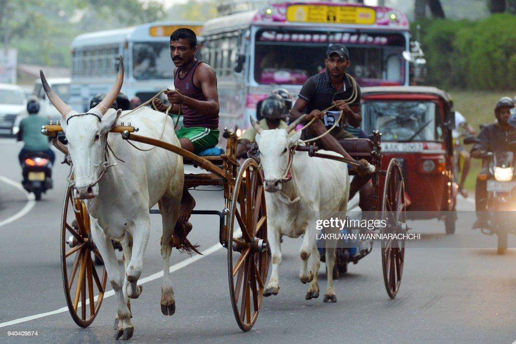SRI LANKA-NEW-YEAR : News Photo