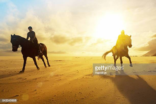 Riders galloping towards camera silhouetted by golden winter sun