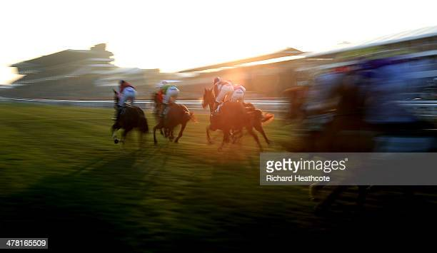 Riders in The Weatherbys Champion Bumper race in the late afternoon sunlight during Ladies Day at the Cheltenham Festival at Cheltenham Racecourse on...