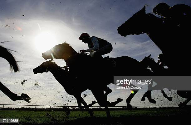 Riders on the course during the USK Vally Stud Median Auction Maiden Stakes run at Newmarket Roley Mile race course on October 12, 2006 in Newmarket,...