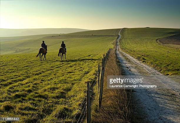 riders - recreational horseback riding stock pictures, royalty-free photos & images