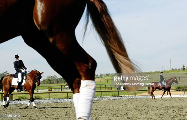 Riders put in final practice for competition at the Sydney International Dressage Event being held at the Sydney International Equestrian Centre at...