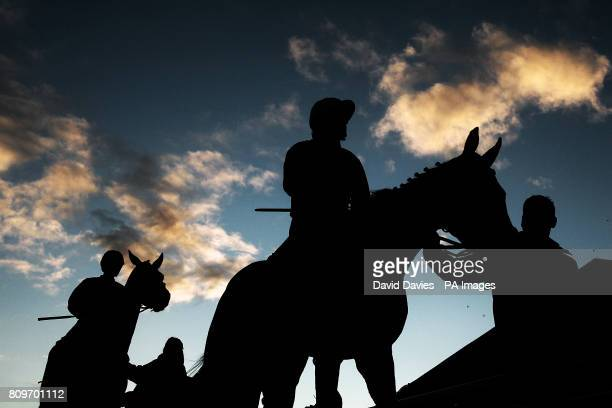 """Riders return to the paddock after the E B F Jenny & Mark Pitman Gold Syndicates """"National Hunt"""" Novices Hurdle at Cheltenham race course, Friday..."""