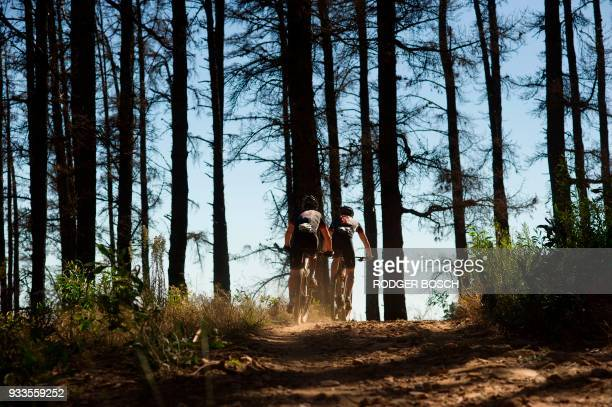 TOPSHOT Riders rides though a pine forest on Table Mountain during the prologue stage which marks the start of the 2018 Cape Epic African Mountain...