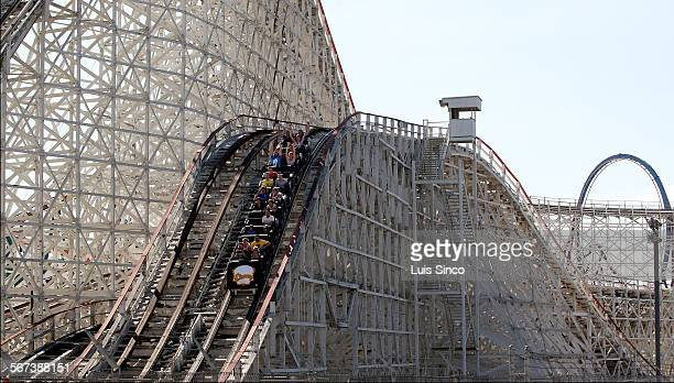VALENCIA CALIF AUG 12 2014 Riders take a downward trajectory aboard the Colossus roller coaster at Six Flags Magic Mountain Colossus opened on June...