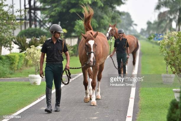 Riders taking their horses for walk at the Equestrian Faculty of Remount and Veterinary Corps Centre and College on September 1 2018 in Meerut India...
