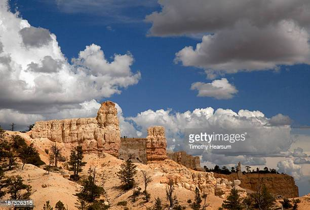 ridge of hoodoo formations with evergreen trees - timothy hearsum stock pictures, royalty-free photos & images