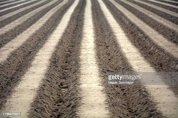 ridges the cultivated land - grooved stock pictures, royalty-free photos & images