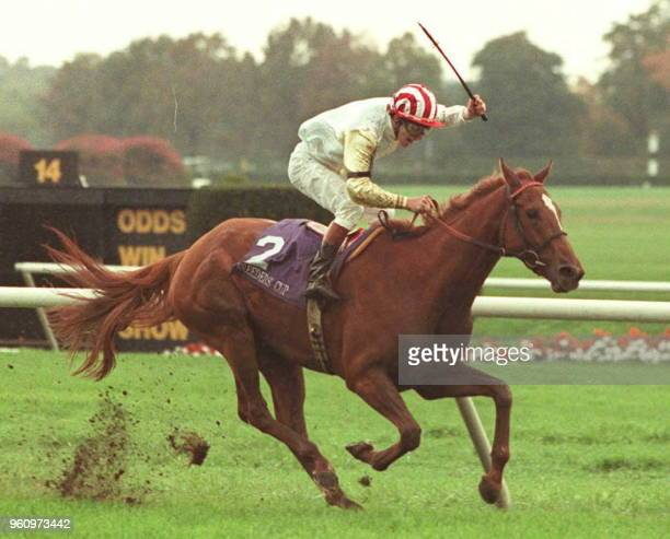 Ridgewood Pearl from Great Britain is ridden toward the finish line by jockey John Murtagh 28 October at the Breeders' Cup in Elmont New York...