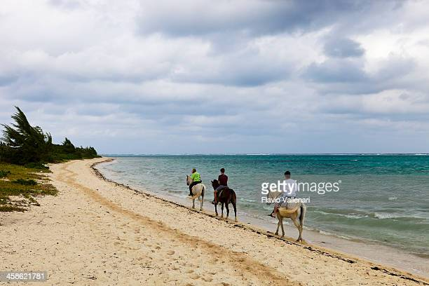 Riding at the Barkers, Grand Cayman