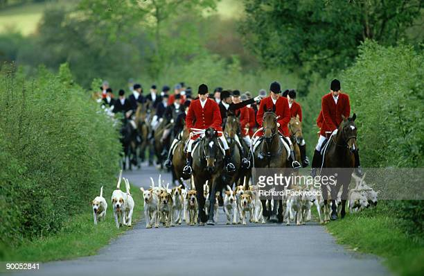 riding from opening meet of quorn foxhounds at