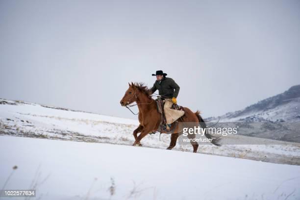 montar a caballo en las montañas de absaroka, en invierno - pantalón de cuero fotografías e imágenes de stock