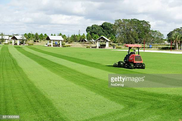 riding mower cuts grass field. - florida landscaping stock pictures, royalty-free photos & images