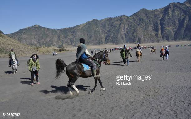 riding up the volcano,  a number of horses are available to the tourists to get to the crater bromo. - bromo crater stock pictures, royalty-free photos & images