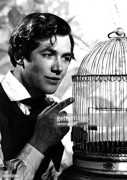 Riedmann Gerhard Actor Austria * Scene from the movie 'Der Vogelhaendler' Directed by Arthur Maria Rabenalt West Germany 1953 Produced by Central...