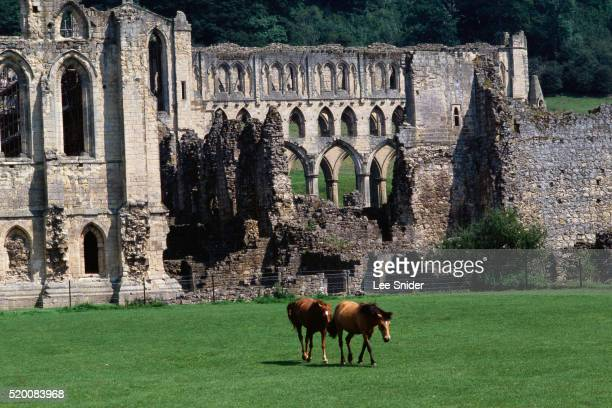 rievaulx abbey ruins near yorkshire moors - rievaulx abbey stock pictures, royalty-free photos & images