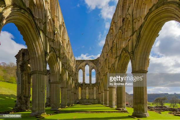 rievaulx abbey, yorkshire, united kingdom - rievaulx abbey stock pictures, royalty-free photos & images