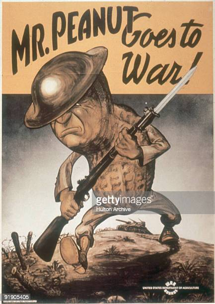 Rifle with affixed bayonet in hand jaw set in determination and helmet at a rakish angle an anthropomorphized peanut strides across a blighted...