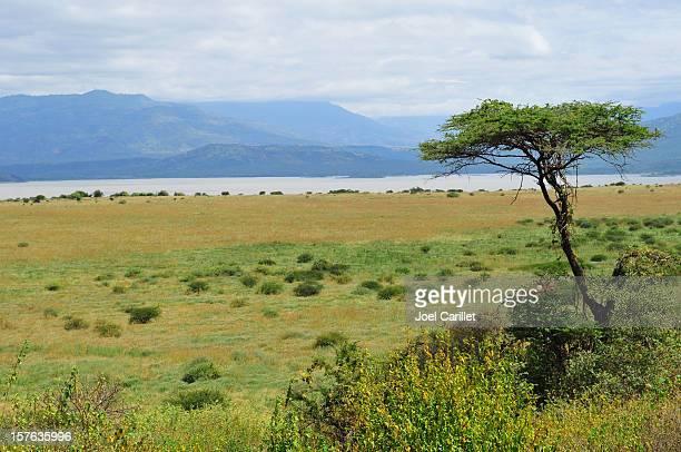 Rift Valley in Ethiopia's Nechisar National Park