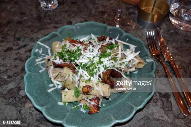 Rigatoni pasta with creamy forest mushroom sauce
