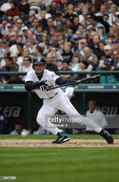 Right fielder Ichiro Suzuki of the Seattle Mariners bunts the ball during the MLB home opener against the Anaheim Angels at Safeco Field on April 8...