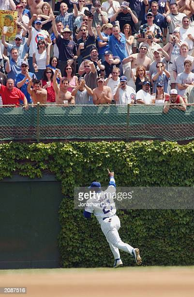 Right fielder Sammy Sosa of the Chicago Cubs runs out to the field as bleecher fans cheer during the interleague game at Wrigley Field on June 7 2003...