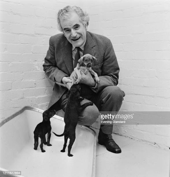 Right Reverend Mervyn Stockwood Bishop of Southwark posed with three puppies at a dogs home and kennels 11th December 1970