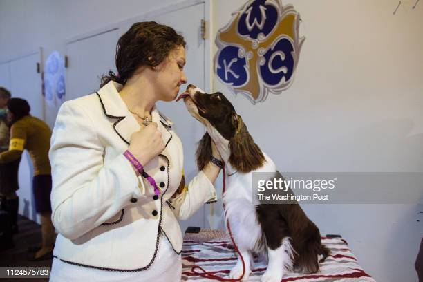 Rikki Knerr is kissed by Grand Champion Windmoore Special Agent a 2 year old English Springer Spaniel at Westminster Kennel Club Dog Show at Pier 92...