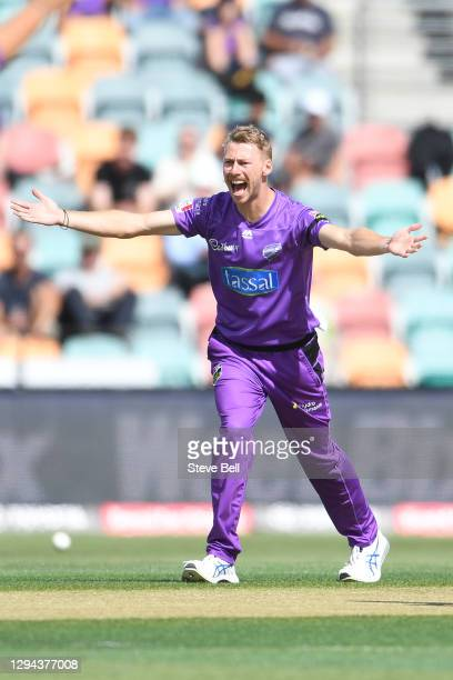 Riley Meredith of the Hurricanes appeals for a wicket during the Big Bash League match between the Melbourne Stars and the Hobart Hurricanes at...