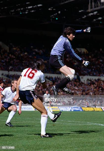 Rinat Dasaev the Russian goalkeeper punches clear from Mark Hateley of England during the England v Russia International Friendly match held at...