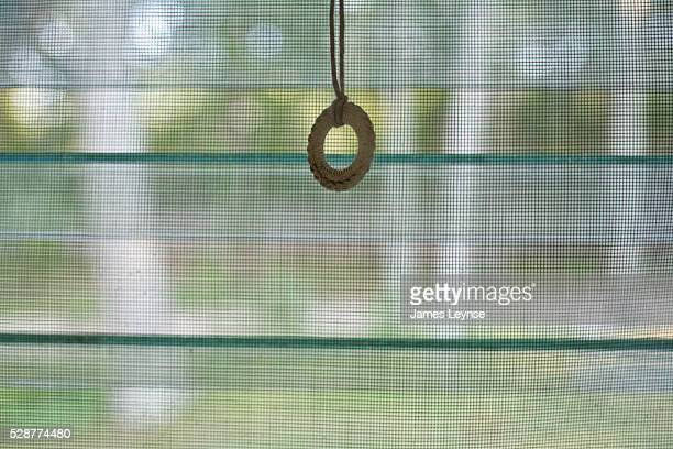 A ring for a window shade dangles in front of a screened in louvered window