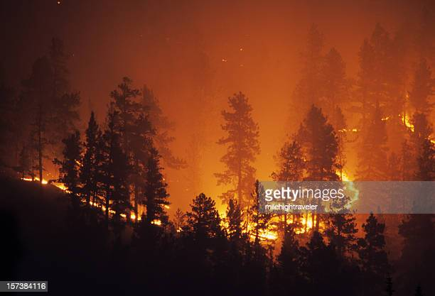 ring of fire bailey colorado rocky mountain forest wildfire - forest fire stock pictures, royalty-free photos & images