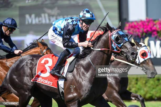 Ringerdingding ridden by John Allen wins the Ladbrokes Sandown Guineas at Ladbrokes Park Hillside Racecourse on November 17, 2018 in Springvale,...