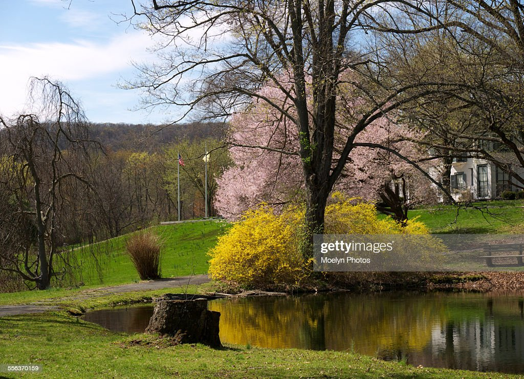 ringwood manor state park stock photo getty images