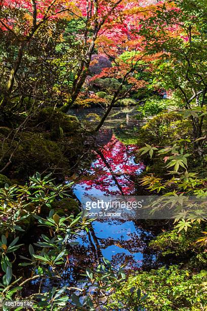 Rinnoji Temple's Shoyoen Garden in Nikko The garden was made in the early Edo period originally but revised in the beginning of the 19th century A...