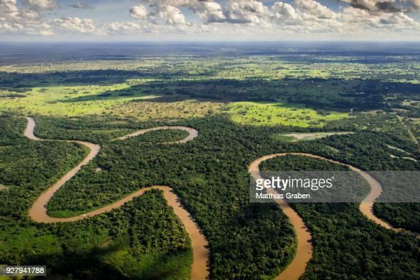 rio aquidauana flows through jungle, pantanal, mato grosso do sul, brazil - mato grosso state stock pictures, royalty-free photos & images