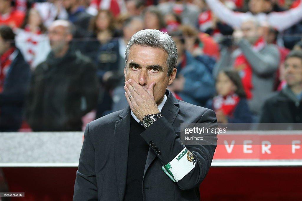 Benfica v Rio Ave - Primeira Liga : ニュース写真
