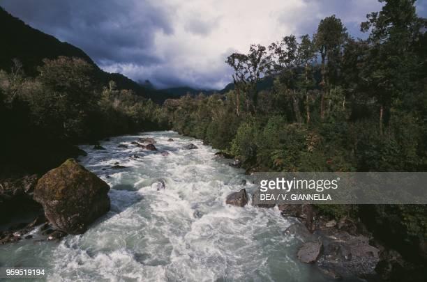 Rio Blanco in the temperate rainforest Hornopiren National Park Los Lagos Region Chile