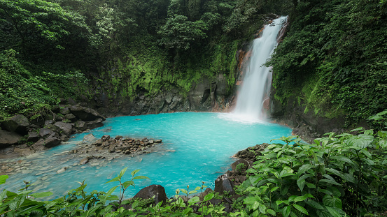 Rio Celeste -National Park Tenorio - Costa-Rica 1160044375