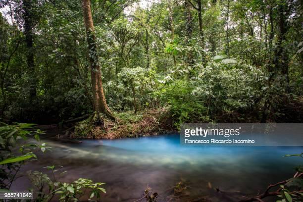 rio celeste, tenorio, costa rica, central america - iacomino costa rica foto e immagini stock